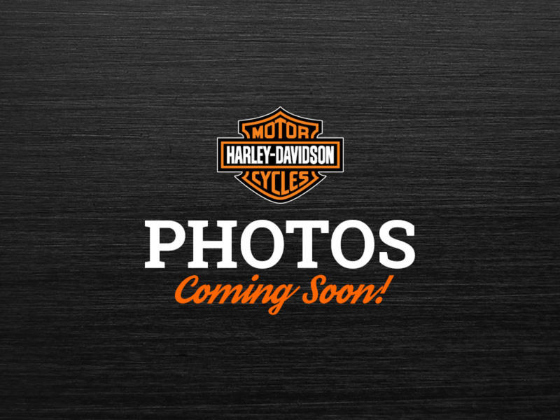 Pre-Owned 2011 Harley-Davidson Forty-Eight XL1200X